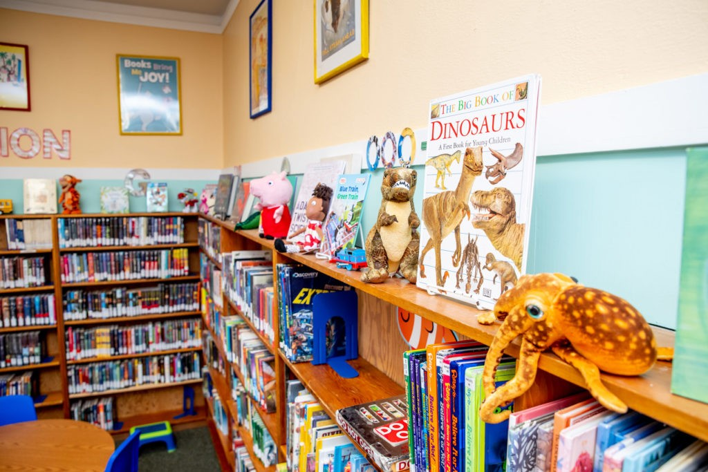 Colorful stuffed animals and books of all sizes fill the shelves of the school library.